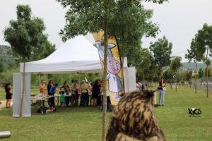 Ruta de les fonts amb pícnic saludable @ Plaça Poeta Sitjà · Castell d'Aro